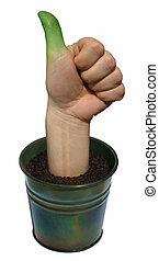 pulgar verde