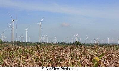 pulito, e, energia rinnovabile, alimentazione vento