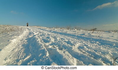 Pulling Sledge Through Winter