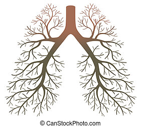pulmão, pacientes