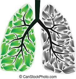 pulmões, perigo
