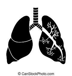pulmones, en, negro y blanco