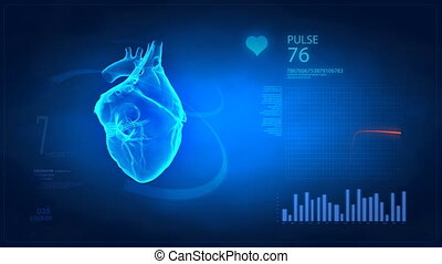 Pulse trace concept - Rotating real human heart with pulse...