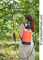 pulvérisation, femme, arbre