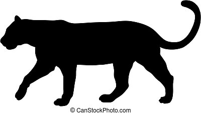 Abstract vector illustration of puma