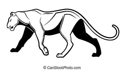 Puma - Black and white puma
