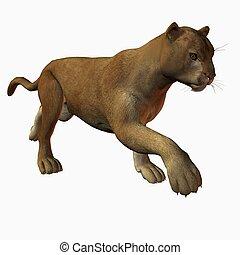 Puma - 3D Render