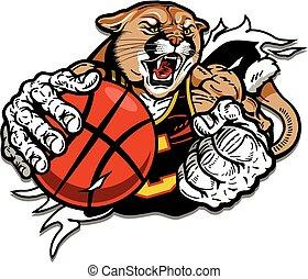 puma, joueur basket-ball