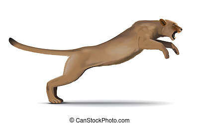 Puma jump illustration