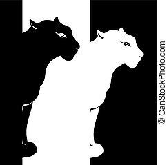 Puma - Vector animal
