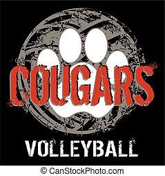 puma, volleyball