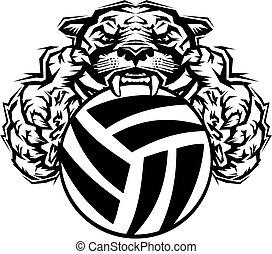 Pumas, volleyball. Liga, kugel, schule, volleyball, pumas ...
