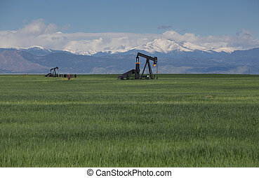 Pump Jacks in Green Field With Snow Covered Rocky Mountains and Blue Sky