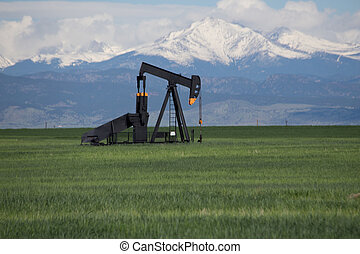 Pump Jacks in Green Field With Snow Covered Rocky Mountains...