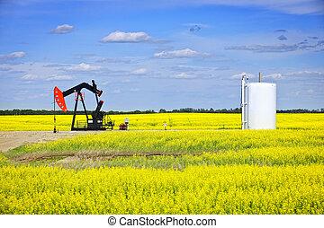 pump, olja, nickande, prärieer