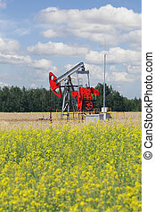 Pumpjack - oil production, oilfield pump jack