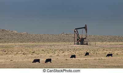 Oil pumpjack on the field in Cheyenne, WY.