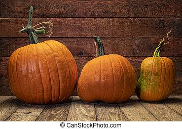 pumpkin against weathered wood