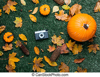 Pumpkin and autumn season leaves with camera