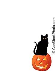 PUMPKIN AND CAT