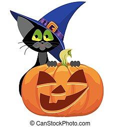 Pumpkin and cat. Halloween.