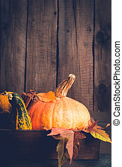 Pumpkin and cinnamon closeup. Autumn background. Thanksgiving or Halloween concept, copy space