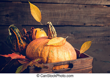 Pumpkin and falling leaves. Autumn, Thanksgiving or Halloween concept, copy space