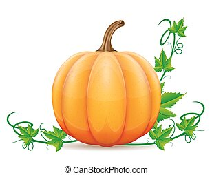 pumpkin and leaf vector illustration isolated on white...