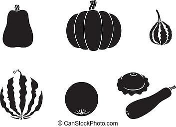 Pumpkin and melon - Pumpkin, watermelon, melon, zucchini,...