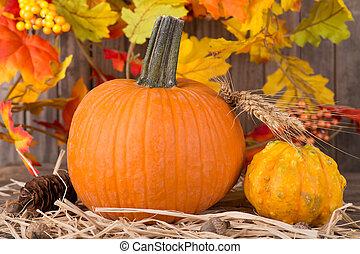 Pumpkin and Squash Closeup