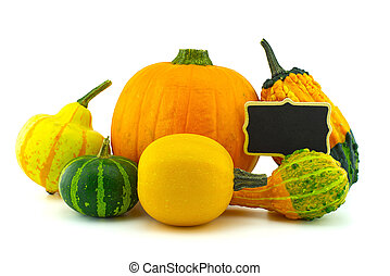 Pumpkin and squash collection and black chalkboard