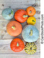 Pumpkin and squash varieties on wooden background