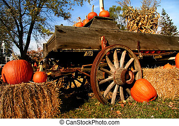 Many pumpkins, Gourds and corn arranged on cart and hay bales