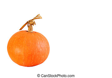 Pumpkin Ball isolated on white background.