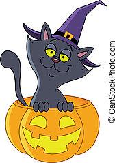 Pumpkin cat - Halloween cat sitting in a pumpkin