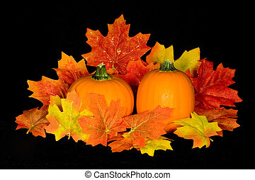 Miniature pumpkin and fall maple leaf centerpiece on background of black micro velvet
