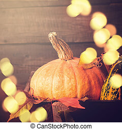 Pumpkin closeup. Autumn Bokeh lights background. Thanksgiving or Halloween concept, copy space