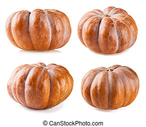 Pumpkin collection isolated on white backgroun