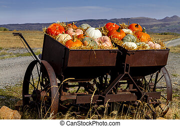 Pumpkin display in old farm equipment on ranch road - Fall ...