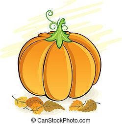 Pumpkin - Autumn pumpkin