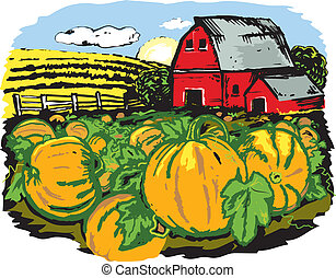 Scene with a pumpkin patch and barn in the distance