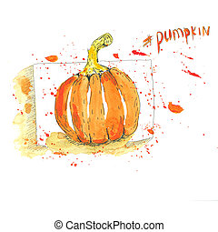 Pumpkin Hand drawn watercolor on a white isolated background