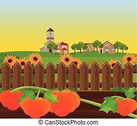 Pumpkin harvest garden Vector background