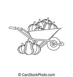 Pumpkin harvest illustration