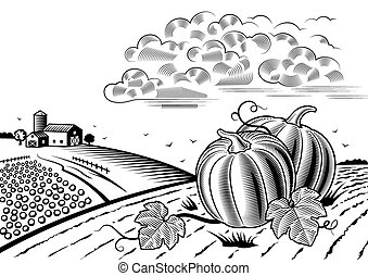 Retro landscape with pumpkins in woodcut style. Editable black and white vector illustration with clipping mask.