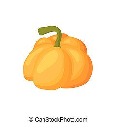 Pumpkin icon, cartoon style