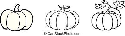 pumpkin icon on white background