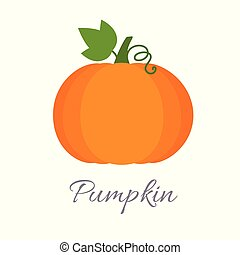 Pumpkin icon with title