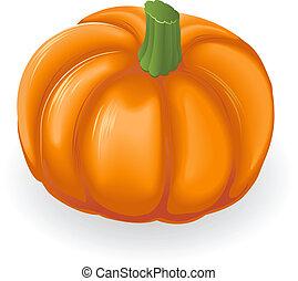 pumpkin, illustration
