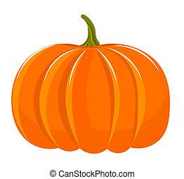 Pumpkin illustration isolated over white